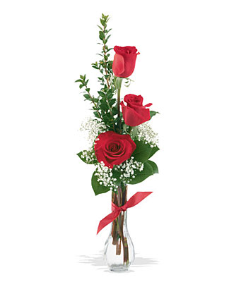 3 Red Roses from Backstreet Florist in Harrisburg, AR and Wynne, AR