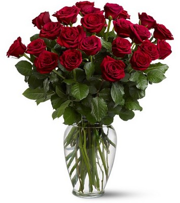 Two Dozen Red Roses from Backstreet Florist in Harrisburg, AR and Wynne, AR